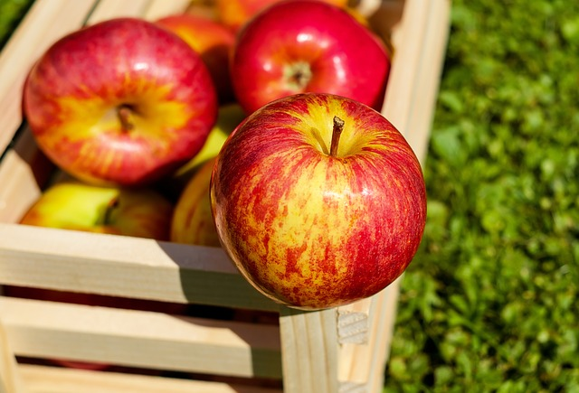Specjalistyczne chłodnie do warzyw i owoców