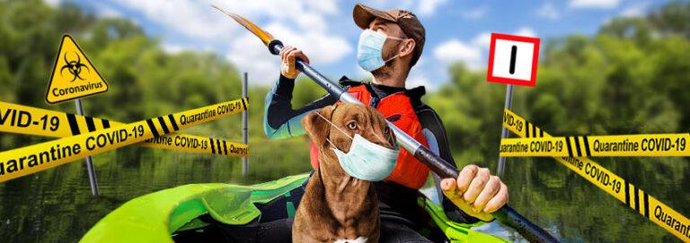 Kamizelka do pływania dla psa – polecane modele